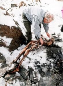 Mummia_uomo_del_Similaun_sulle_Alpi_italiane_1991