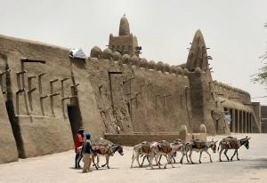 800px-Donkeys,_Timbuktu