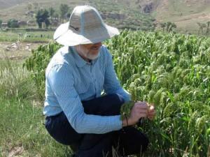Martin Jones con il miglio nel Nord della Cina (Foto di Martin Jones)