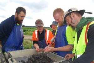 Adam Boethius, dottorando in Osteologia all'Università di Lund insieme ad altri archeologi a Blekinge, Svezia (Adam è la quarta persona da sinistra). Credit: Lund University