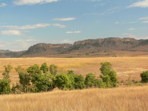 Plains_of_western_central_Madagascar_in_the_dry_season