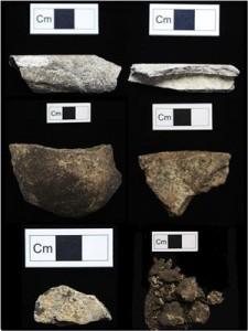 Selezione di frammenti ossei da Cnoc Coig. Credit: Sophy Charlton