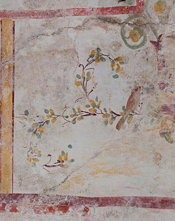 Decorazione vegetale con uccellino dalla Sala della Sfinge. Crediti: Parco archeologico del Colosseo