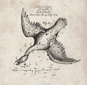 The nova of 1670 recorded by Hevelius