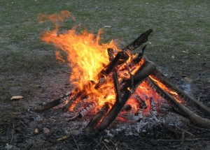 800px-Campfire_4213-300x215