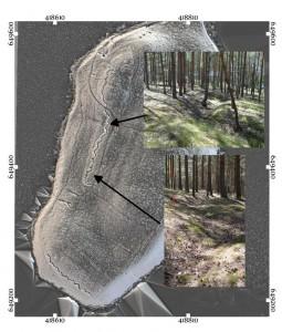 La penisola del lago Śpierwnie, oggi, dalla prospettiva delle prospezioni di campo, le trincee militari sono visibili nel terreno (visualizzazione della pendenza + MSII + MultiHS). Preparata da Mikołaj Kostyrko, Dawid Kobiałka, Filip Wałdoch.