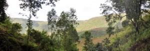 Vista al di fuori della Grotta Mota sugli altopiani etiopi Foto di Matthew Curtis