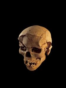 Lo scheletro di quest'uomo fu ritrovato mentre giaceva prono tra i sedimenti della laguna. Il teschio presenta lesioni multiple sulla fronte e sul lato sinistro, coerentemente con ferite da uno strumento contundente, come una clava. Credit: Marta Mirazon Lahr