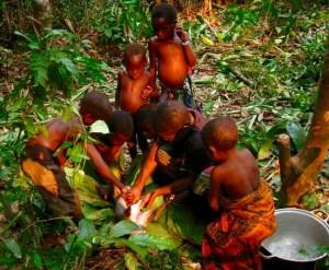 Donne e bambini BaAka preparano un cefalofo azzurro (Philantomba monticola). Credit: Carolyn A. Jost-Robinson