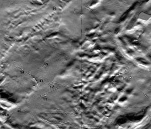 Modello digitale del terreno, generato utilizzando i dati dalla scansione laser aerea (ALS), che mostra le tombe megalitiche nell'area di Dolice (preparato da M. Schiller).
