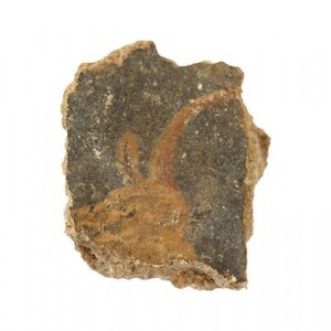La testa di un toro, secondo secolo dell'era volgare (Photo: G. Laron)