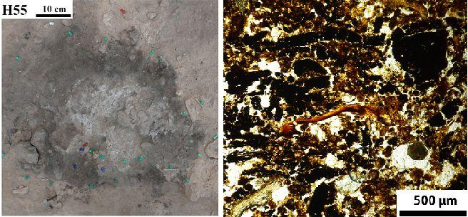 ancient hearths fire Neanderthal settlements Paleolithic