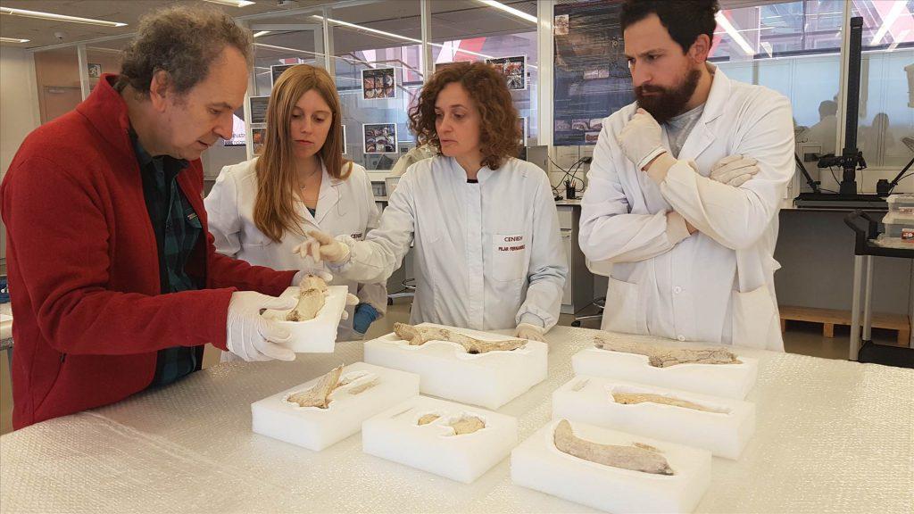 antler mining tools Iberian Peninsula Pozarrate