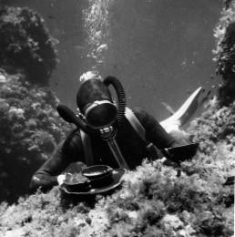 I pionieri dell'archeologia subacquea nell'area Flegrea ed in Sicilia