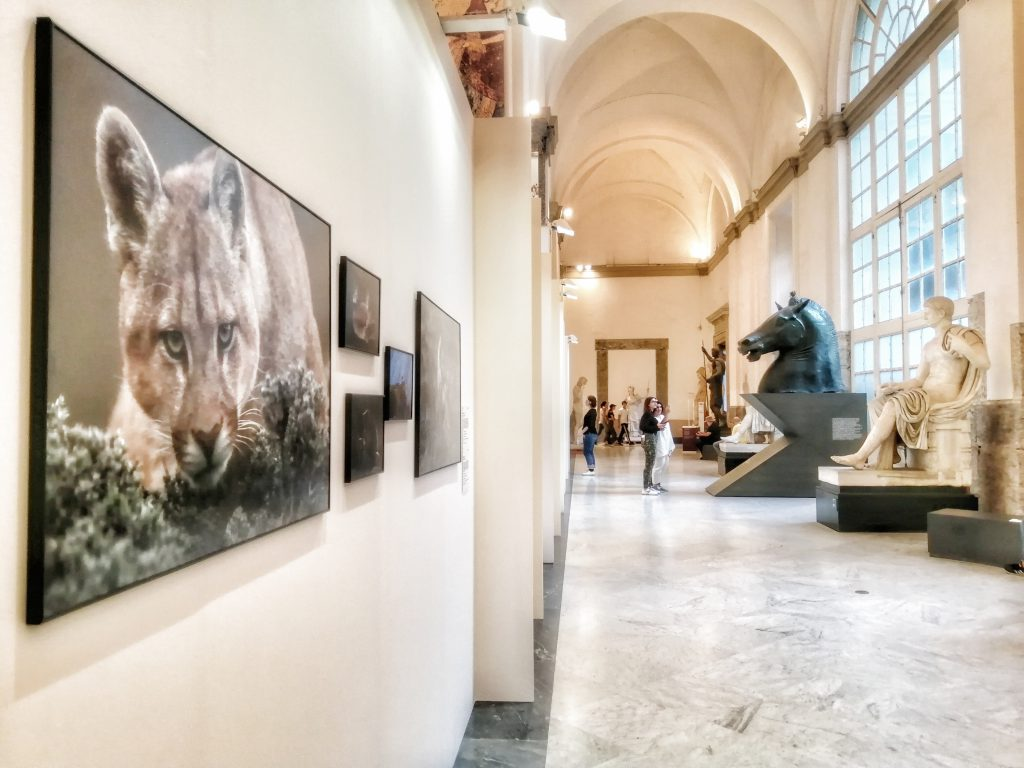 Napoli World Press Photo Exhibition