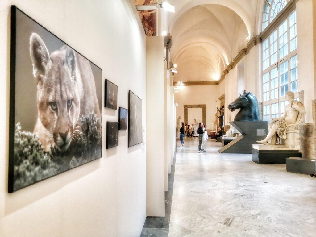Napoli World Press Photo Exhibition