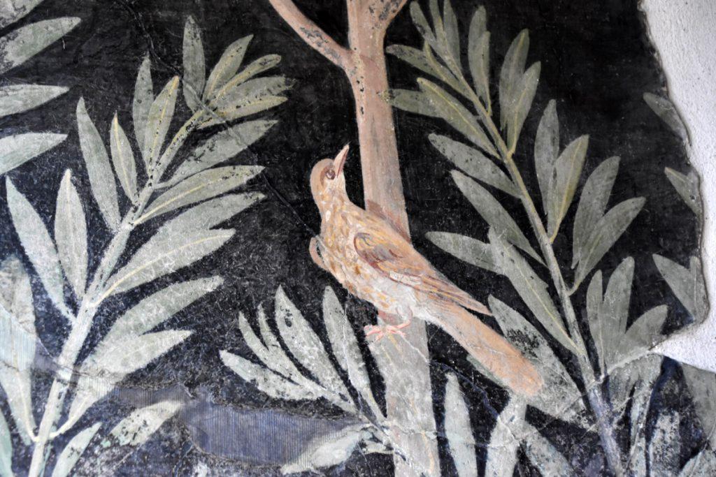 Frutteto. Foto: Parco Archeologico di Pompei