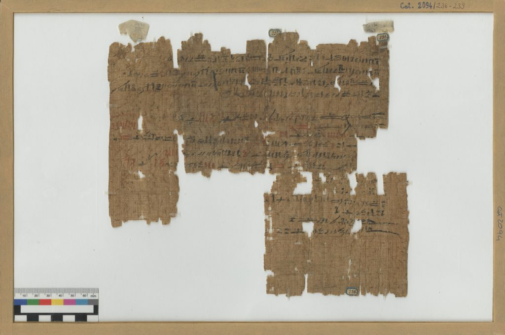 Museo Egizio di Torino Premio Patrimonio Premi Europa Nostra 2020 Turin Papyrus Online Platform TPOP