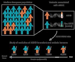 ADHD neanderthals