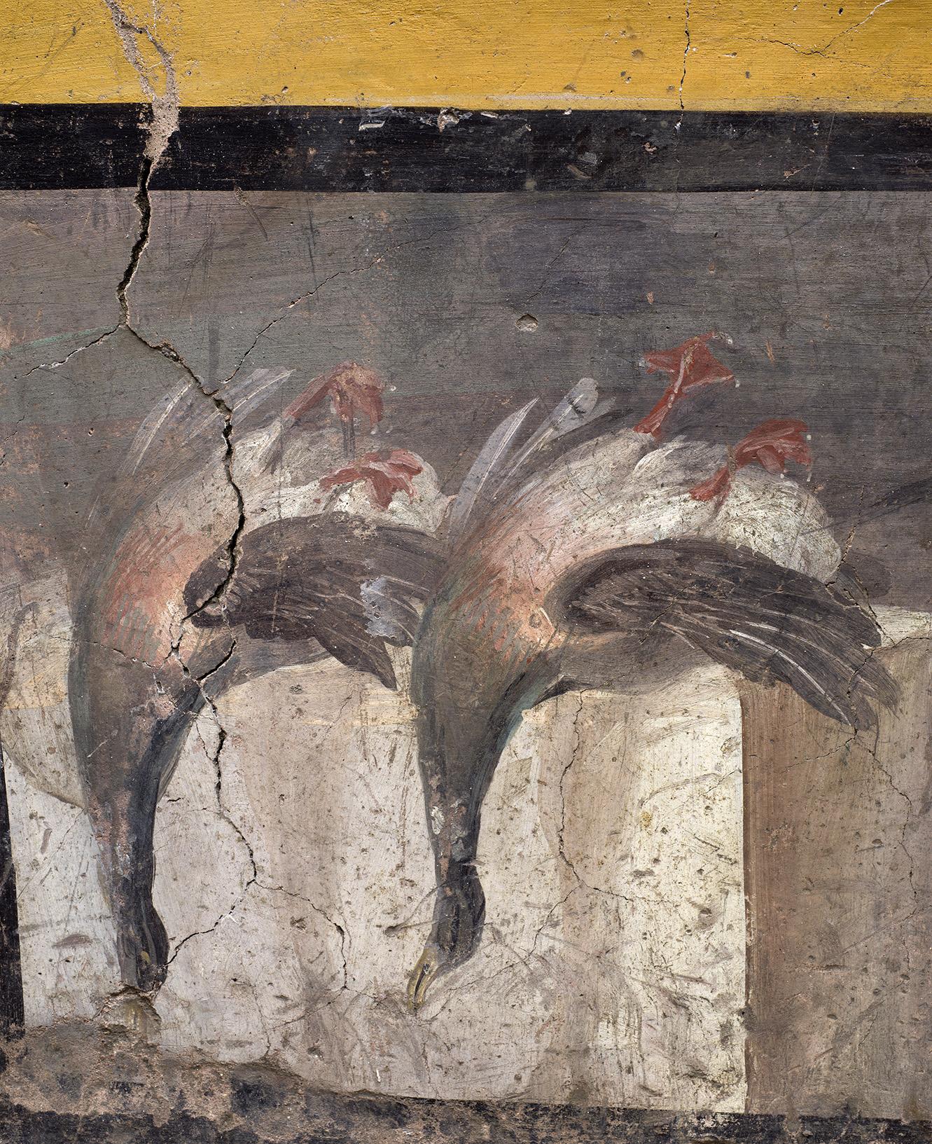 Termopolio Regio V Pompei