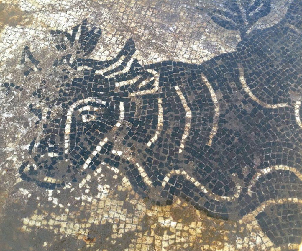 Terme romane sul fiume Cosa