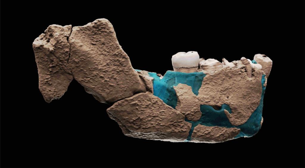 Neanderthal Nesher Ramla Israele fossili
